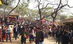 Crowd at Surajkund Craft Mela